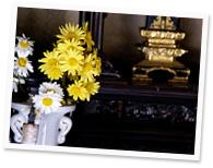 仏壇にお花を供えるときの気をつける点は?
